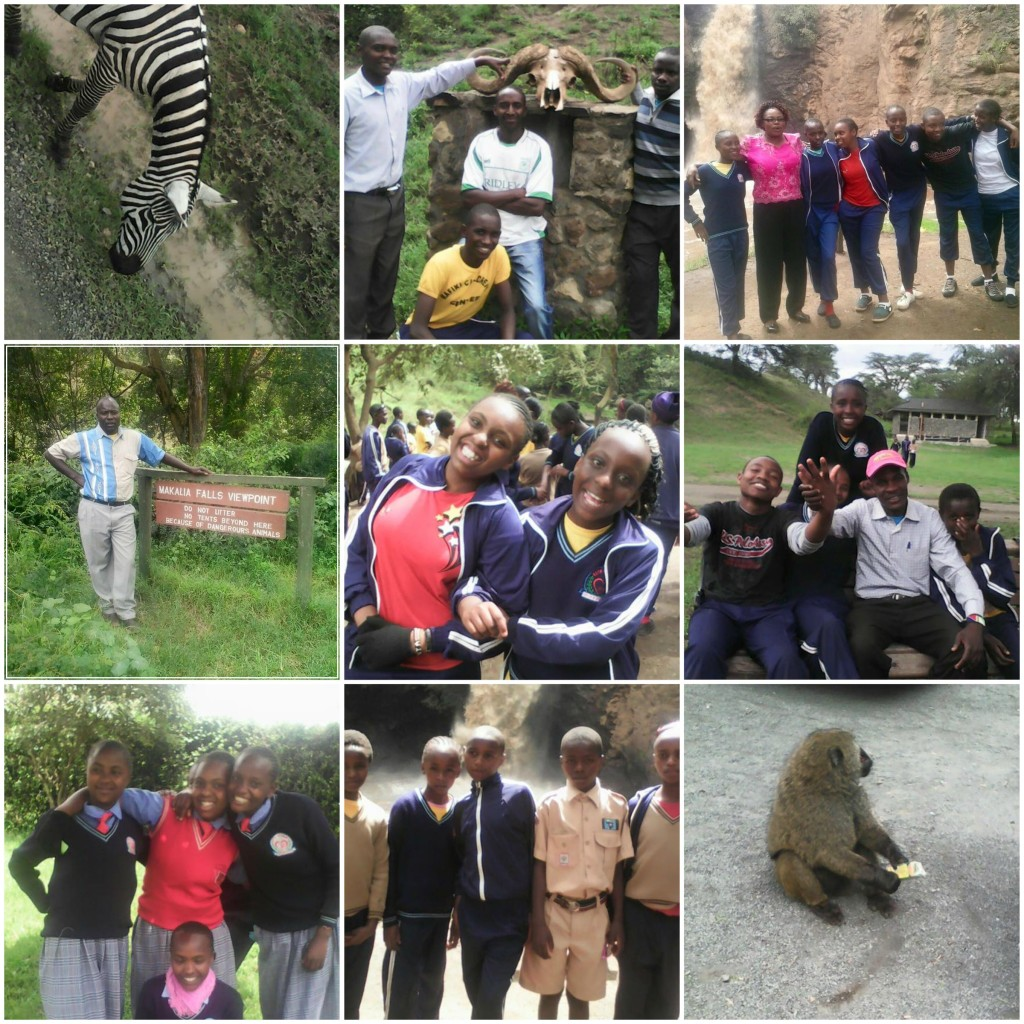 Game Park Collage